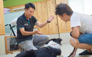 フィールファン代表 ドッグトレーナー 黒木敬史(くろきたかし)