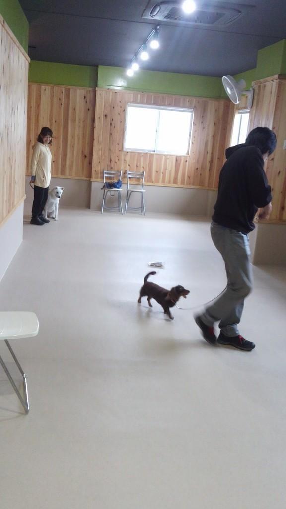 テーマは散歩!(7)