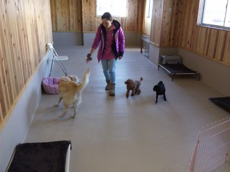 大型犬&小型犬(2)