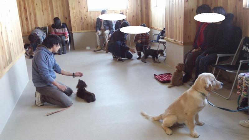 マナートレーニング(2)