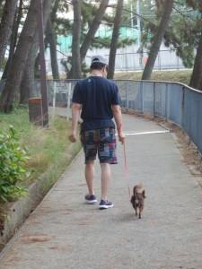 お父さんと散歩